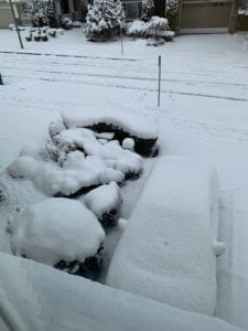 Image of About 10 inches of snow in our front yard on Monday.