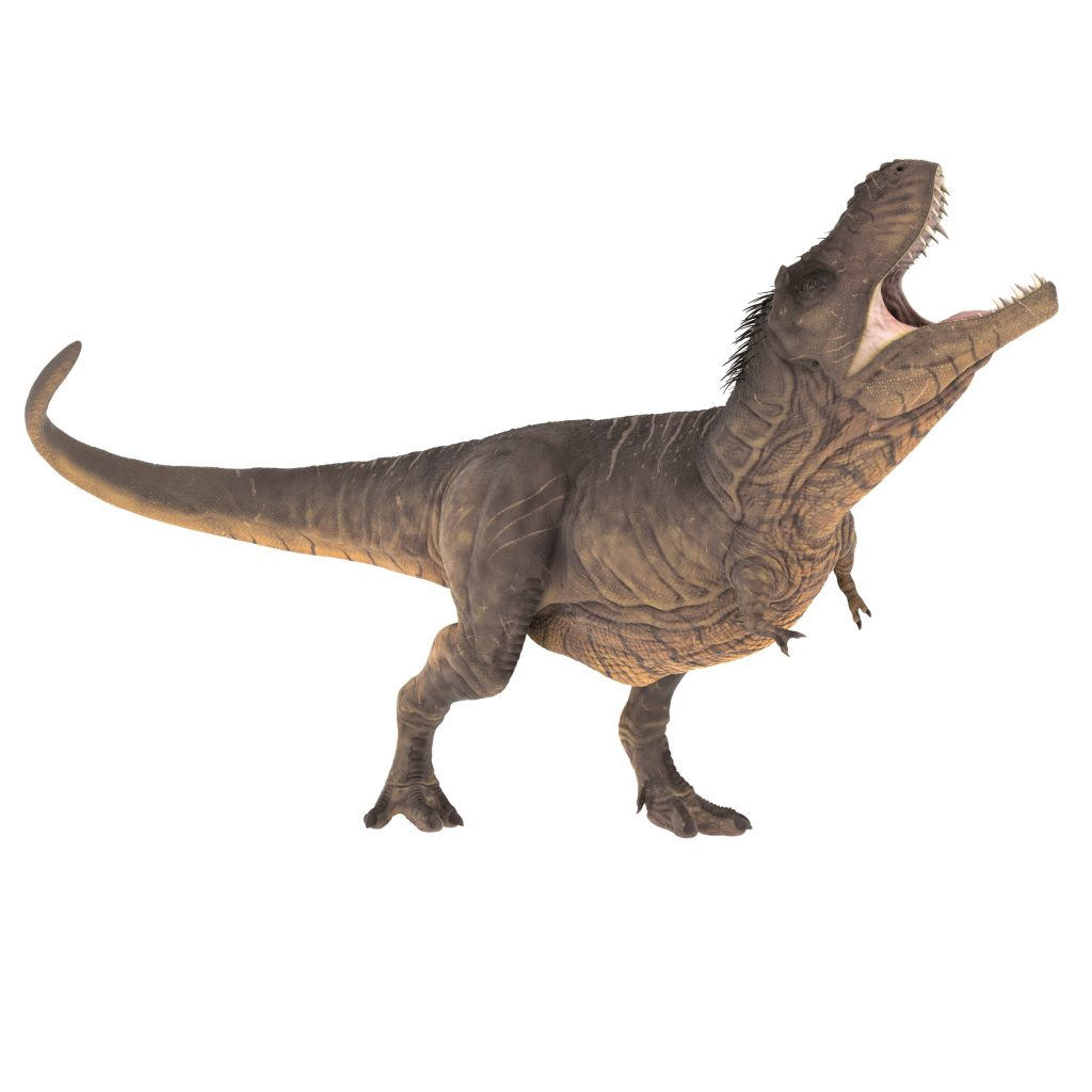 Image of a T-rex howling