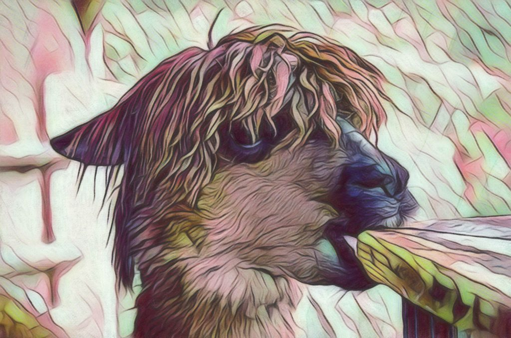 Close up image of a llama chewing on a table in pastel greens and browns