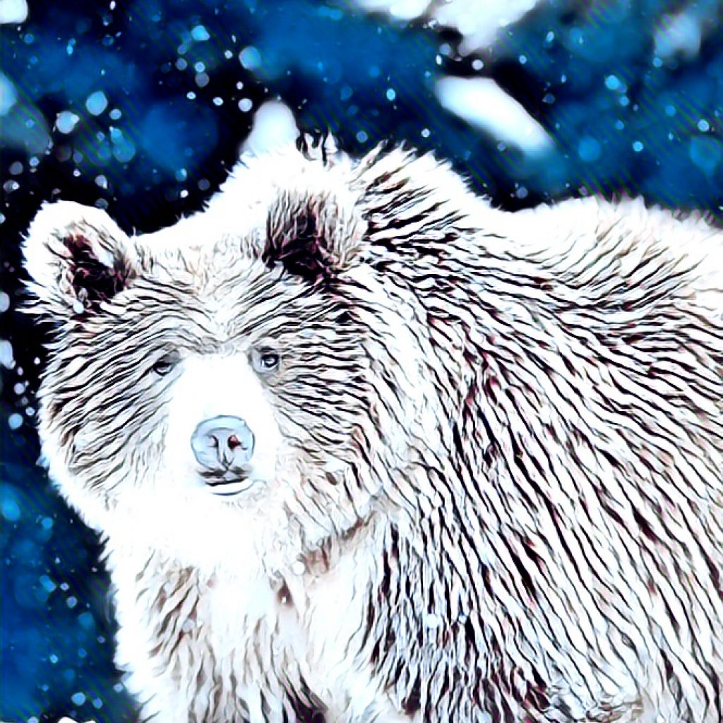 Stylized image of snow falling on a bear in blue and white