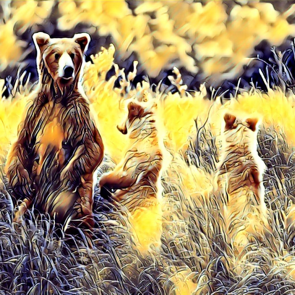 Stylized image of a family of three bears standing on hind legs in shades of gold