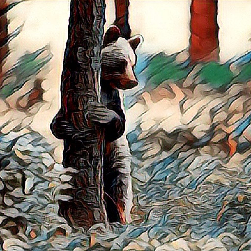 Stylized image of a bear standing on hind legs hugging the tree he's standing behind. in green, red, and white tones